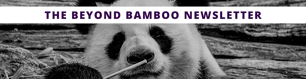 The-Beyond-Bamboo-Newsletter-Hero